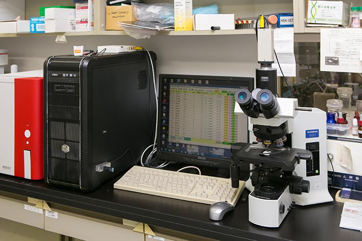 顕微鏡と画像解析装置